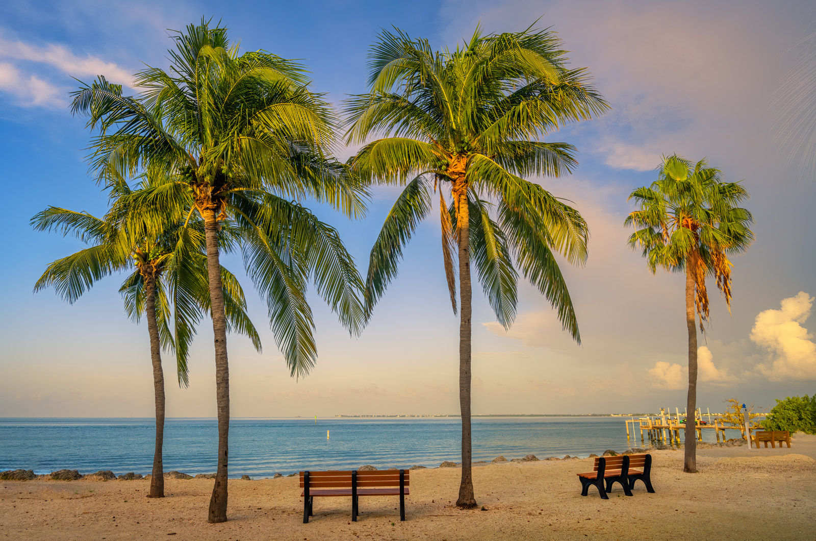 A Limited Edition, Fine Art photograph of palm trees in early morning light on the beach in the Florida Keys. Available as a...