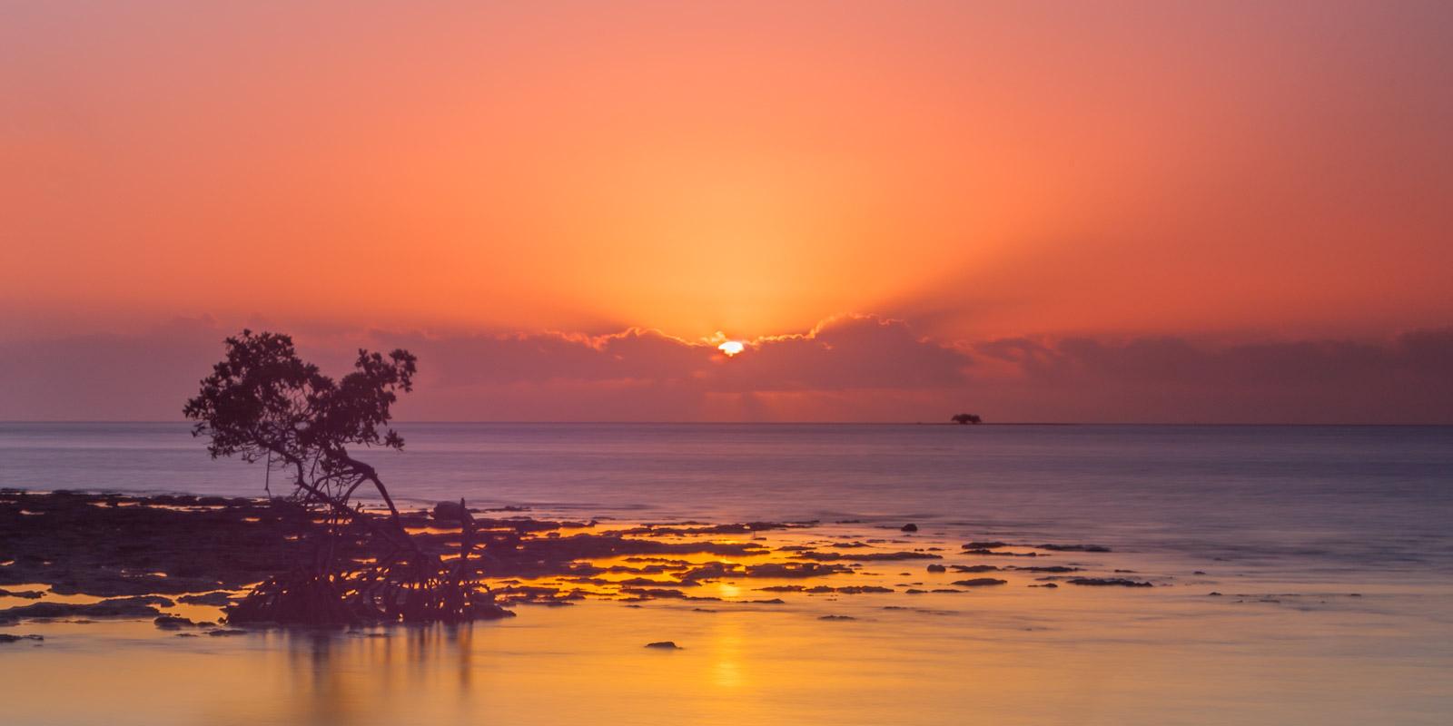 Florida, Big Pine, sunrise, ocean, mangrove, limited edition, photograph, fine art, landscape, coast, photo
