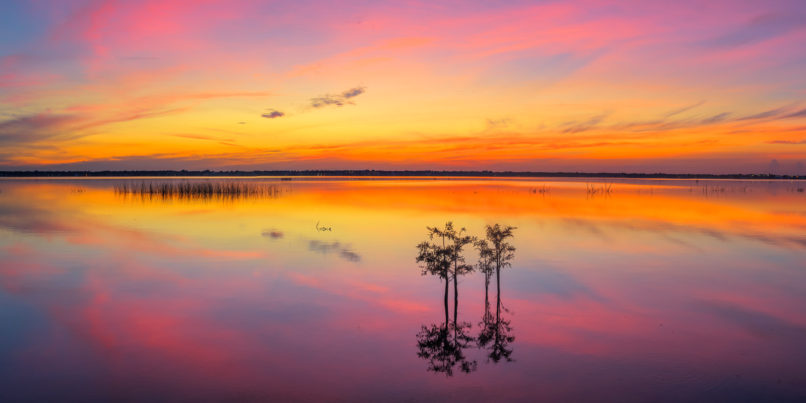 A Limited Edition, Fine Art photograph of a stunning sunrise at Lake Jackson in Sebring, Florida. Available as a Fine Art print...