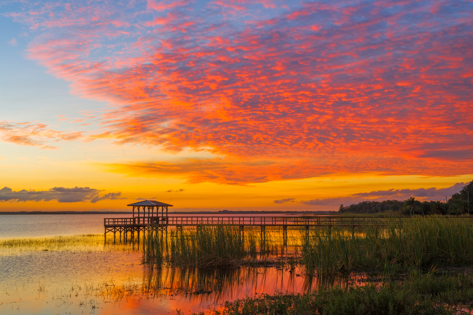 Florida, Lake, Sunset, photo