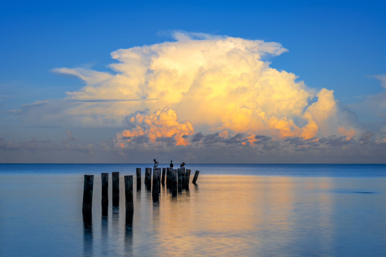 A Limited Edition, Fine Art photograph of the old Naples Pier pilings with morning storm clouds behind them being lit up by the...