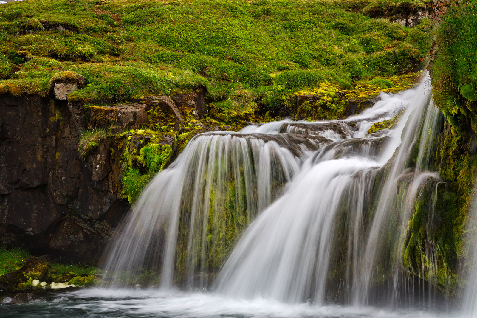 iceland, waterfall, summer, photo