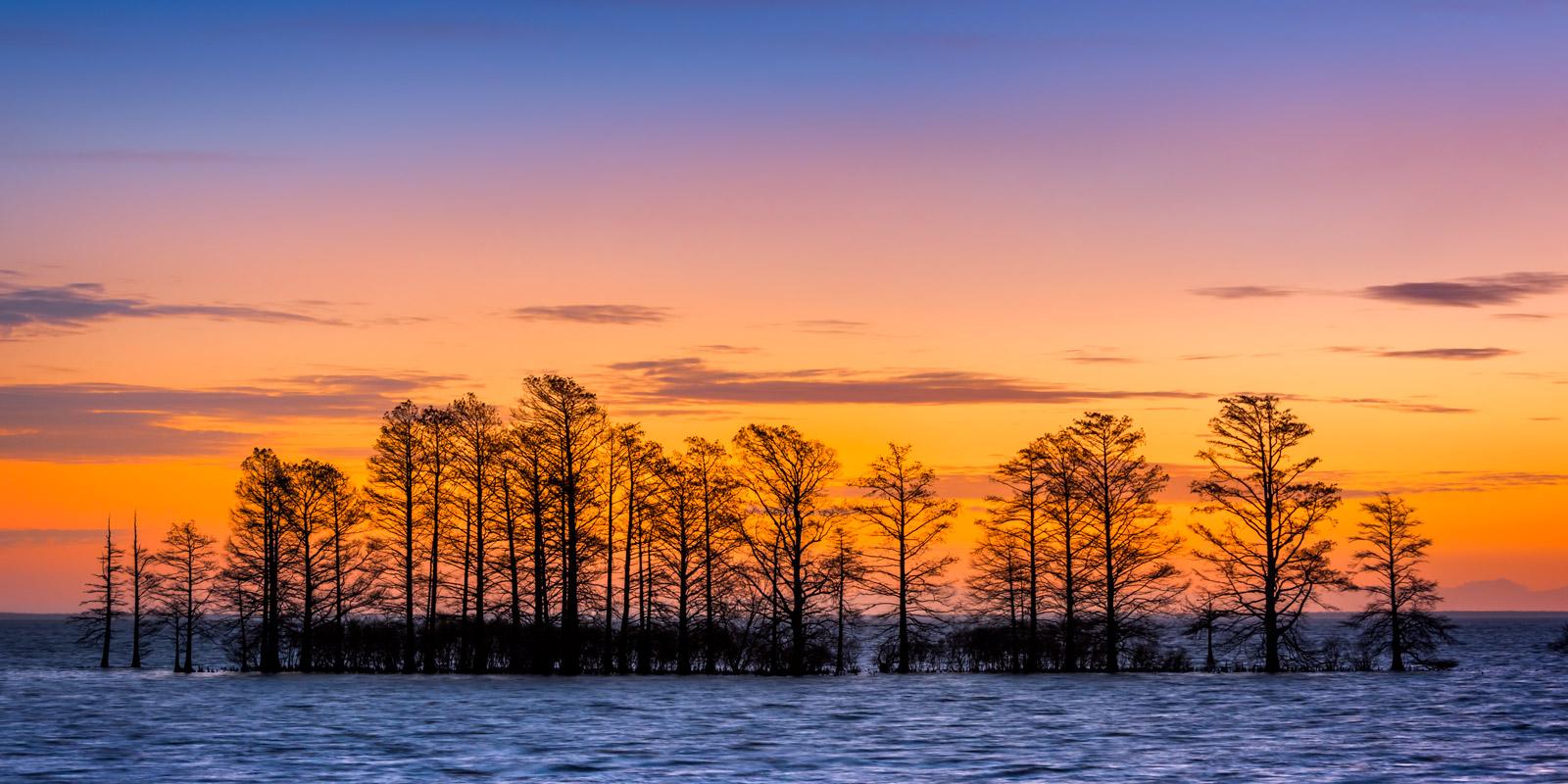 Matamuskeet Morning Lake Matamuskeet North Carolina