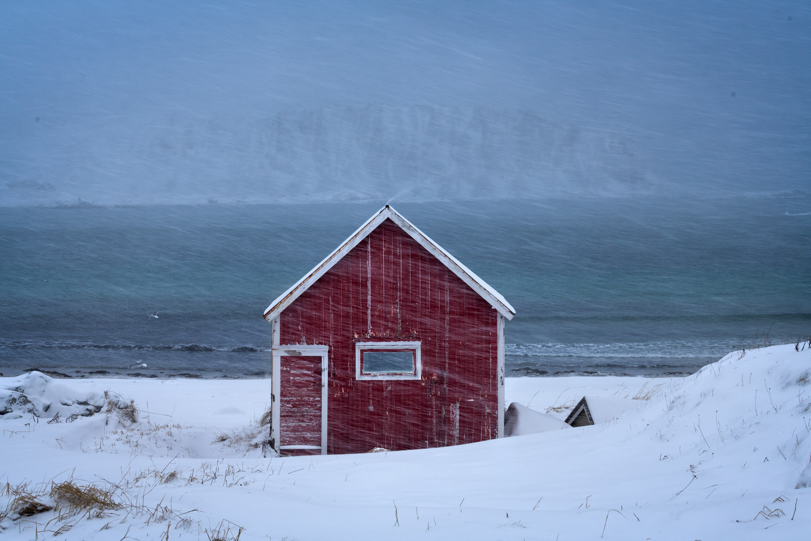 Norway, Ramberg, Winter, Boathouse, Snowstorm