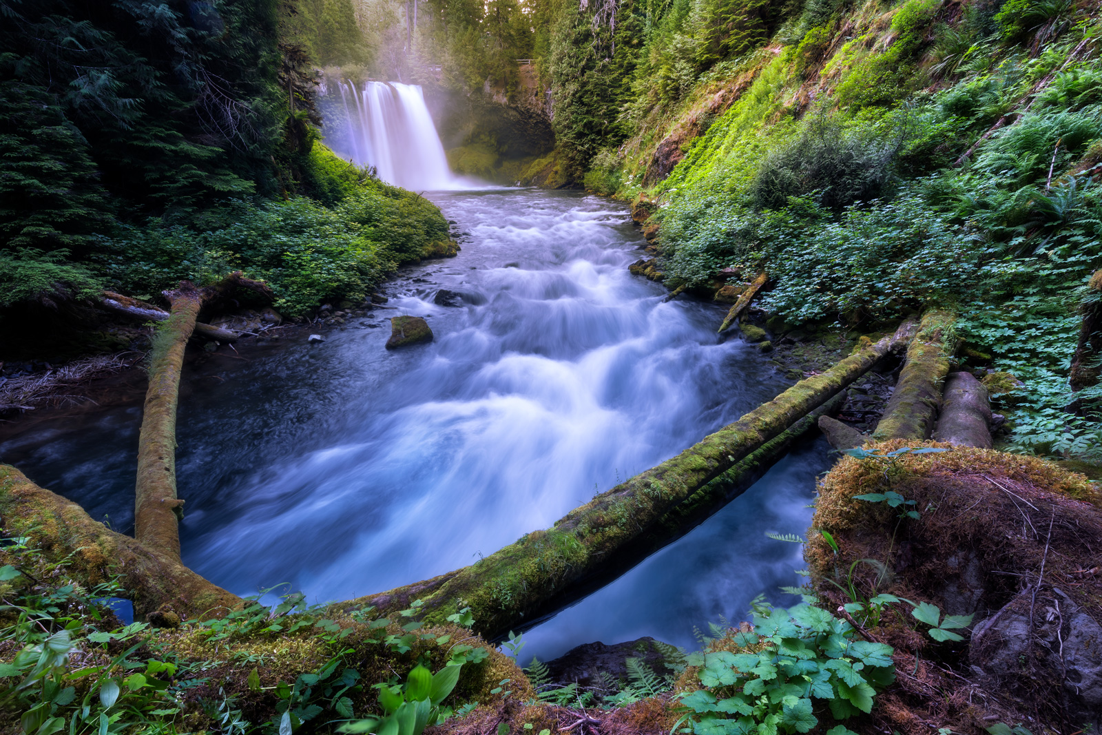 Oregon, River, McKenzie, Waterfall, Koosah Falls, photo