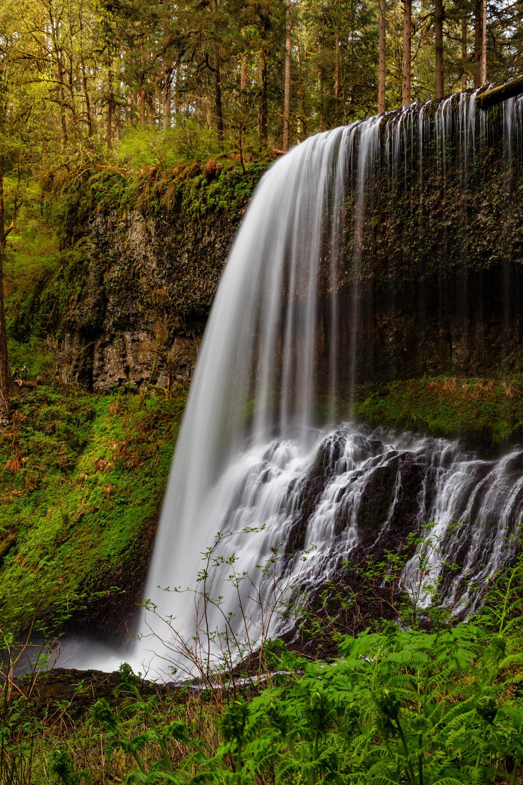 Oregon, North Falls, Silver Falls, Waterfall, Middle North Falls, photo