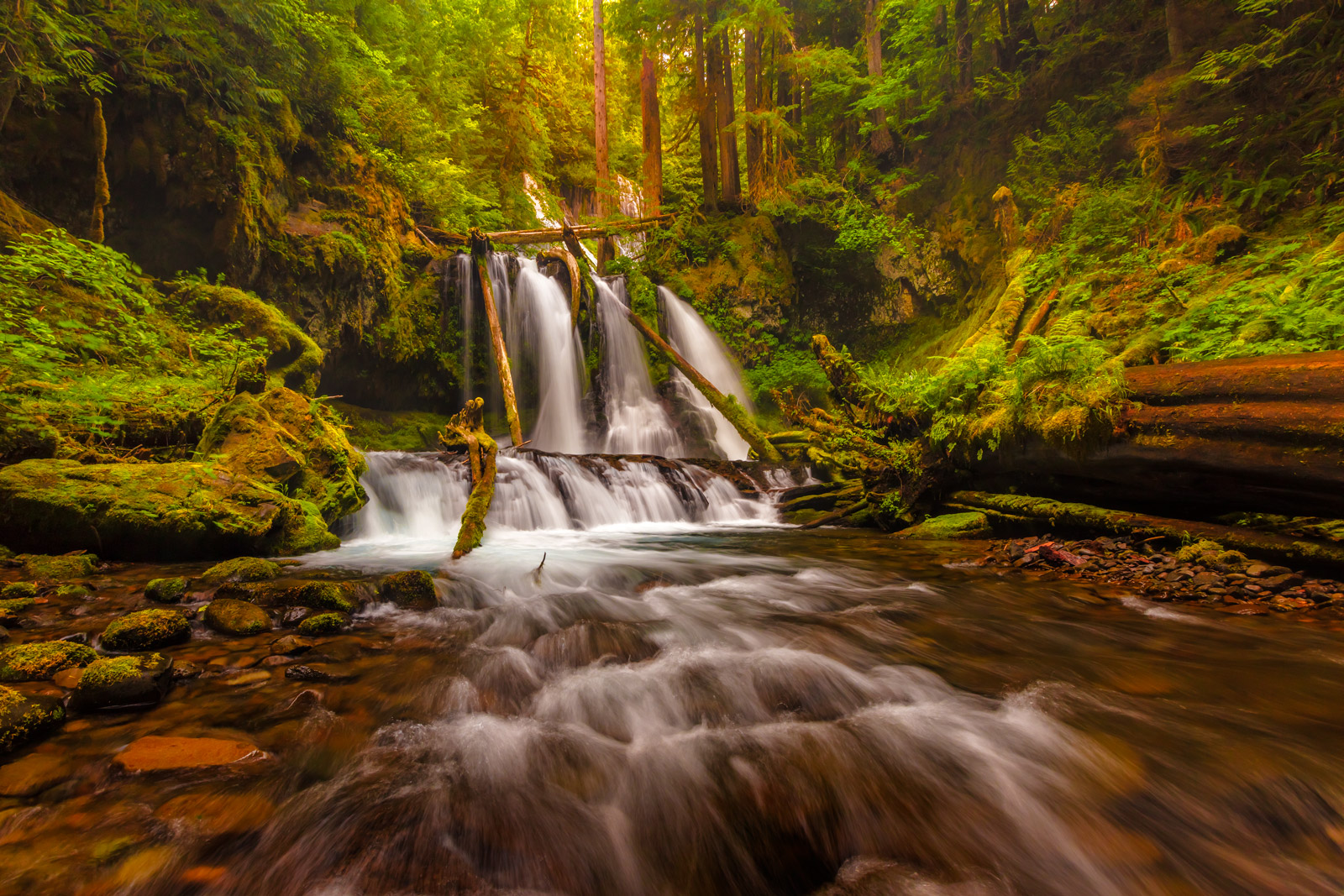 Washington, Panther Creek, Waterfall, Panther Creek Falls, photo