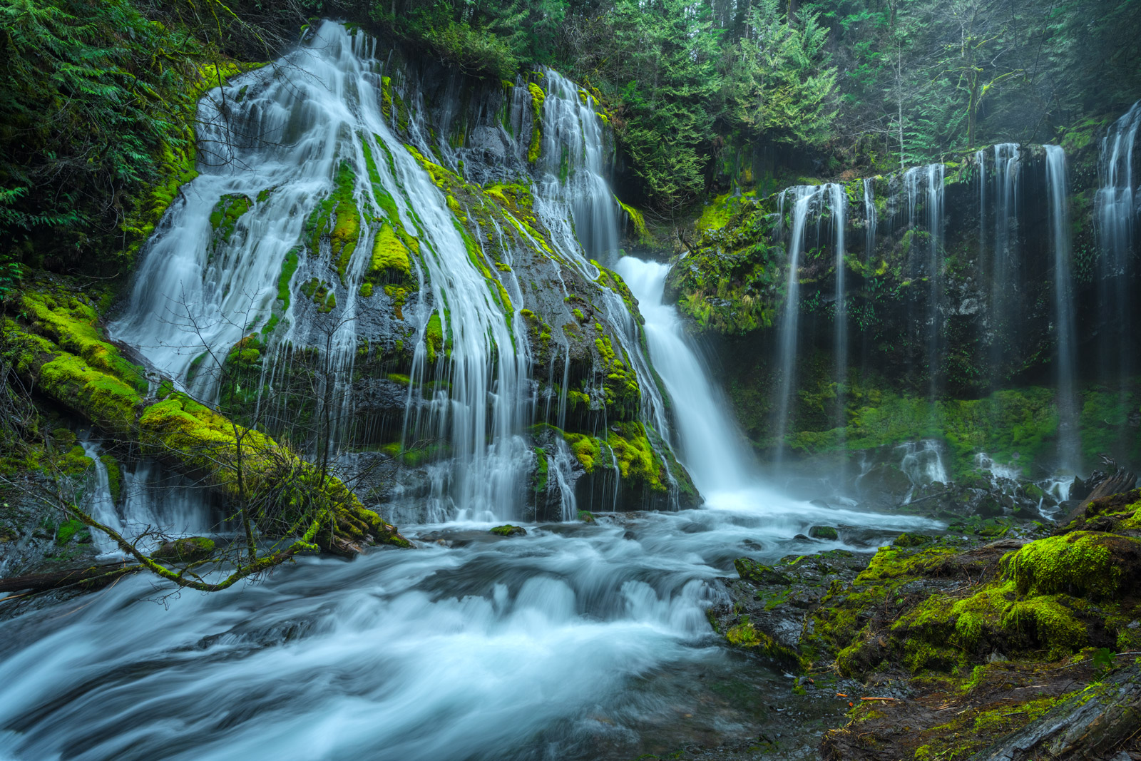 A Limited Edition, Fine Art photograph of Panther Creek Falls in Washington. Available as a Fine Art print, Metal Print or Acrylic...