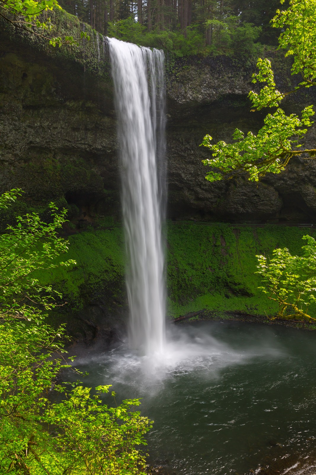 Oregon, South Falls, Silver Falls, Waterfall, limited edition, photograph, fine art, landscape, photo