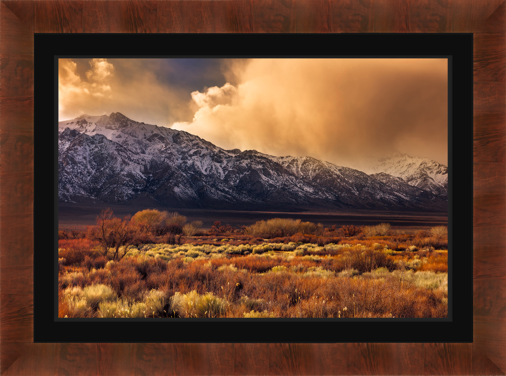 Exhibit Mounted Metal Print, Ready to Hang print preview