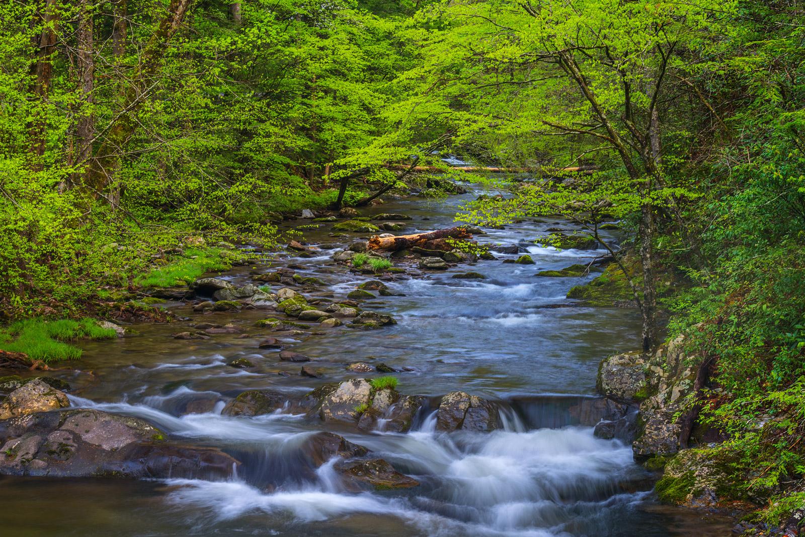 Smoky Mountains, River, Cascades, Spring