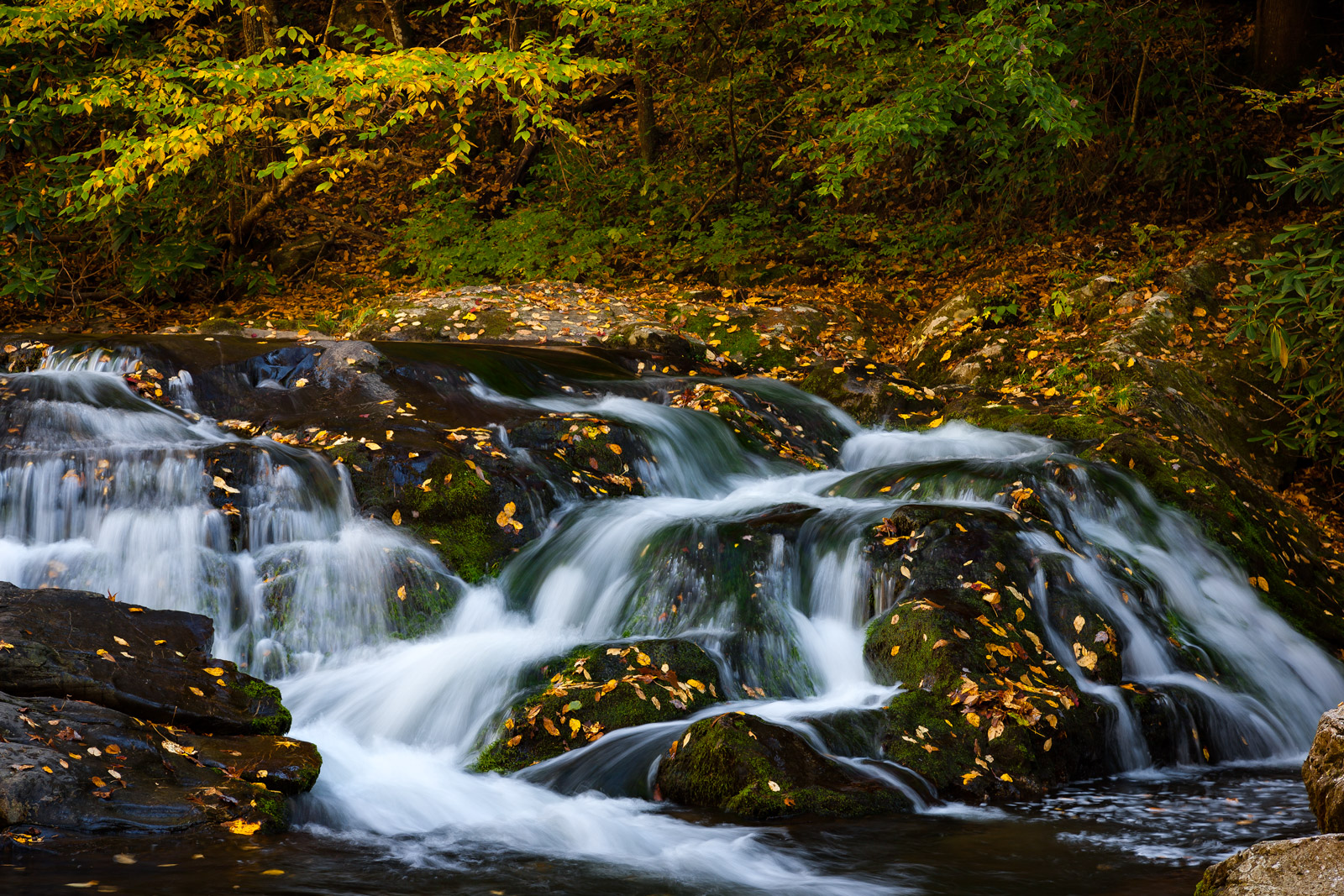 Tennessee, Smoky Mountains, Stream, Fall, Waterfall, limited edition, photograph, fine art, landscape, fall color, photo