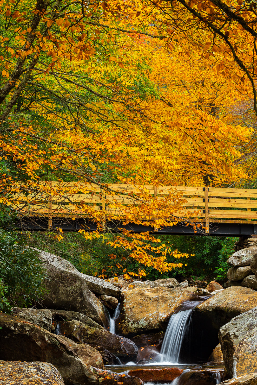 Tennessee, Smoky Mountains, Fall, Color, Bridge, River, limited edition, photograph, fine art, landscape, fall color, photo