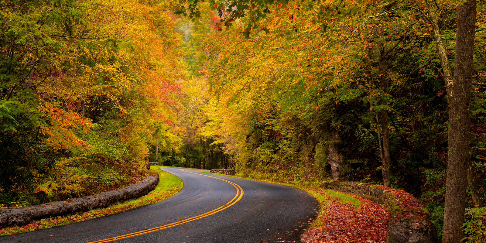 Tennessee, Smoky Mountains, Road, Fall, Color, fall color, photo