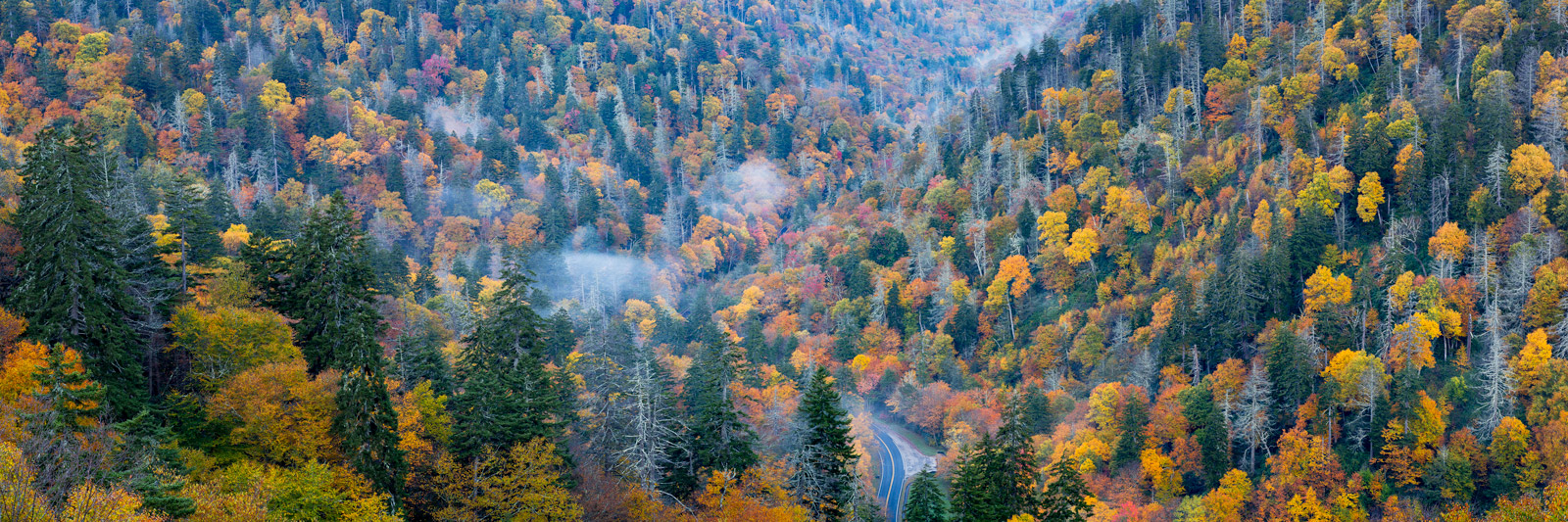 Tennessee, Smoky Mountains, Fall, Color, Road, limited edition, photograph, fine art, landscape, fall color, photo