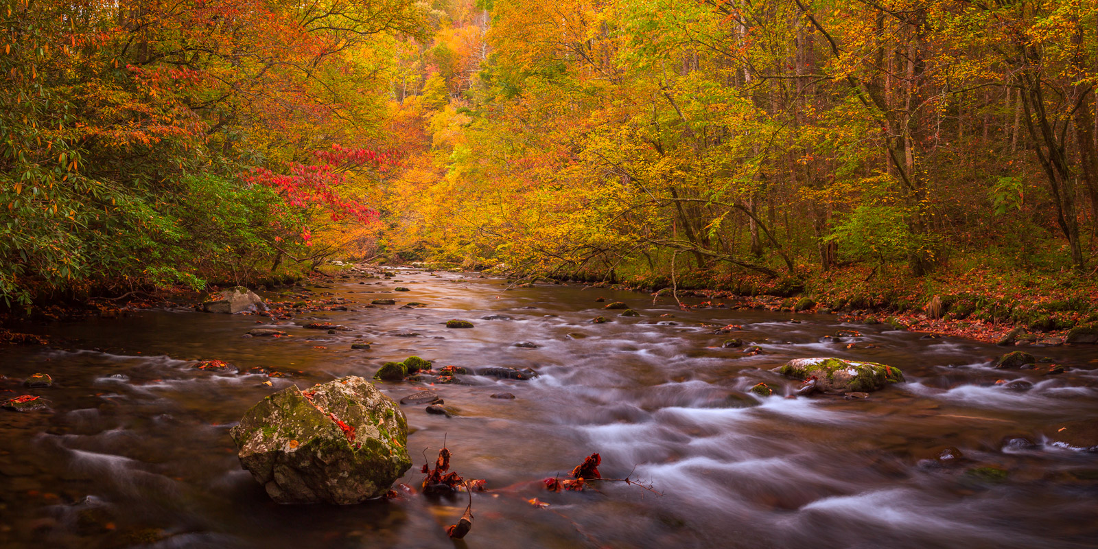 Tennessee, Smoky Mountains, River, Stream, fall color, photo