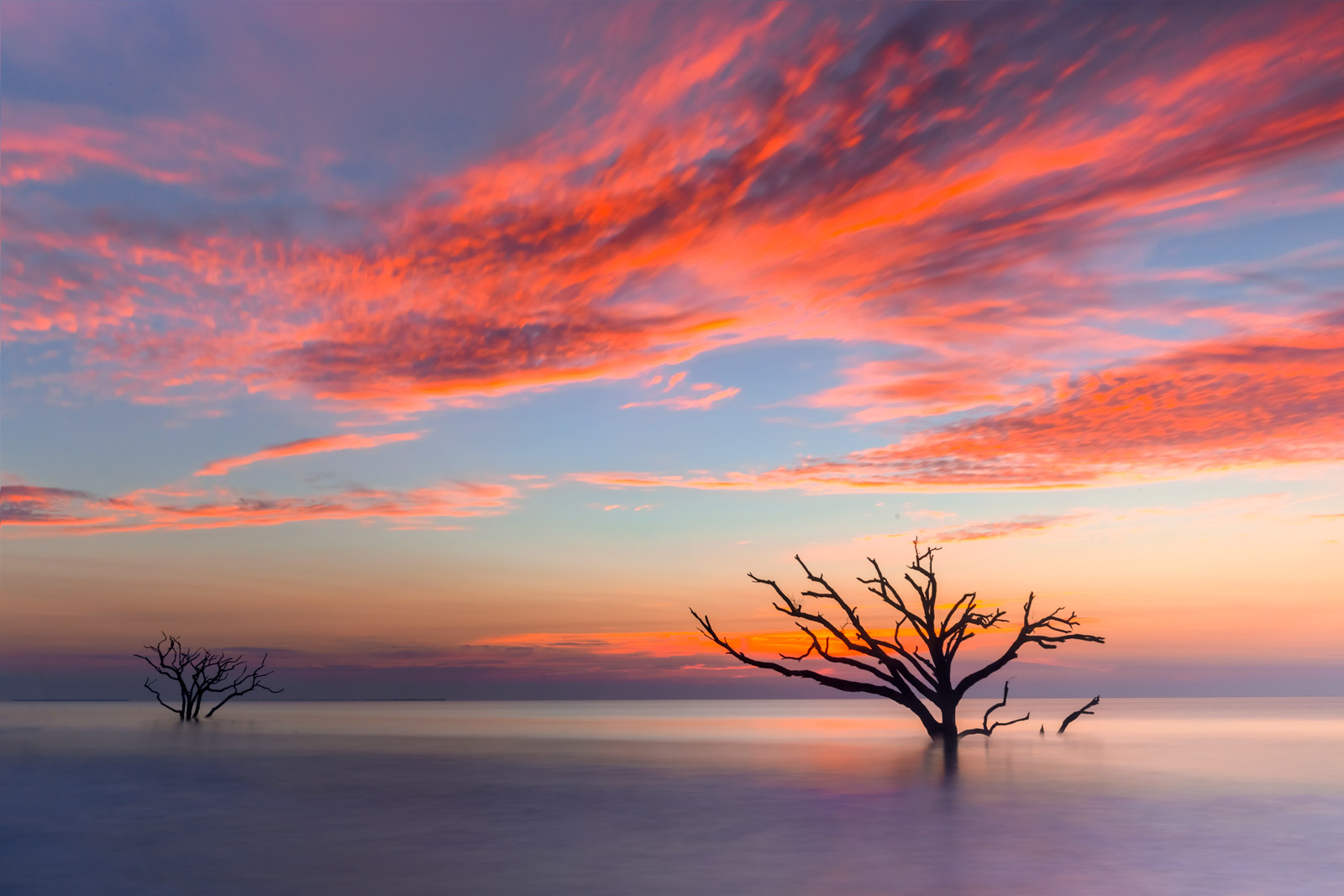 Carolina Coast Fine Art Photography A Limited Edition, Fine Art photograph of a stunning scene of two barren trees in the calm...