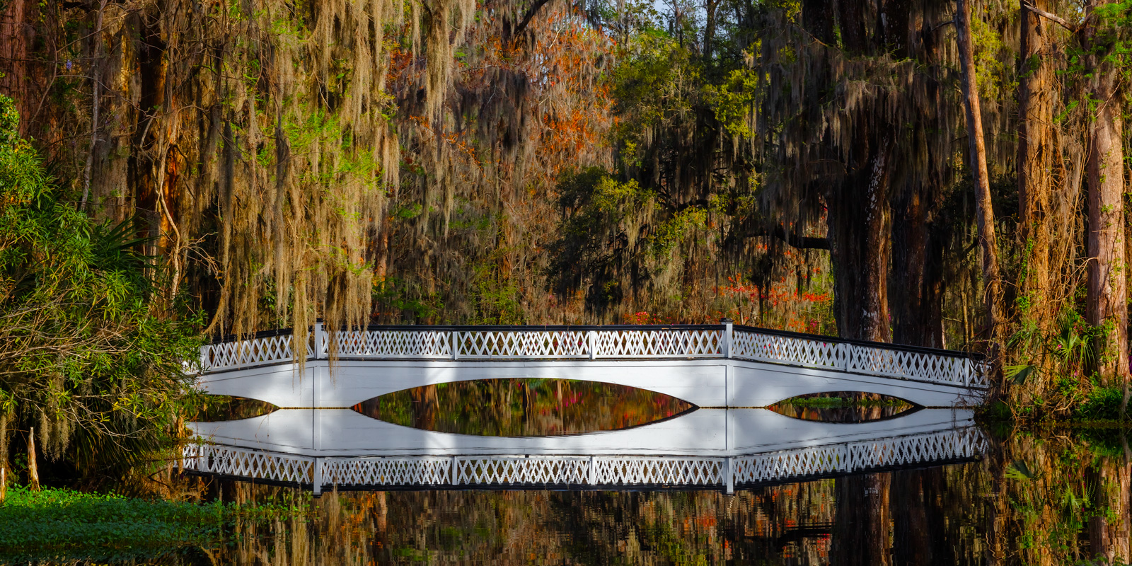 South Carolina, Charleston, Magnolia, Plantation, Bridge