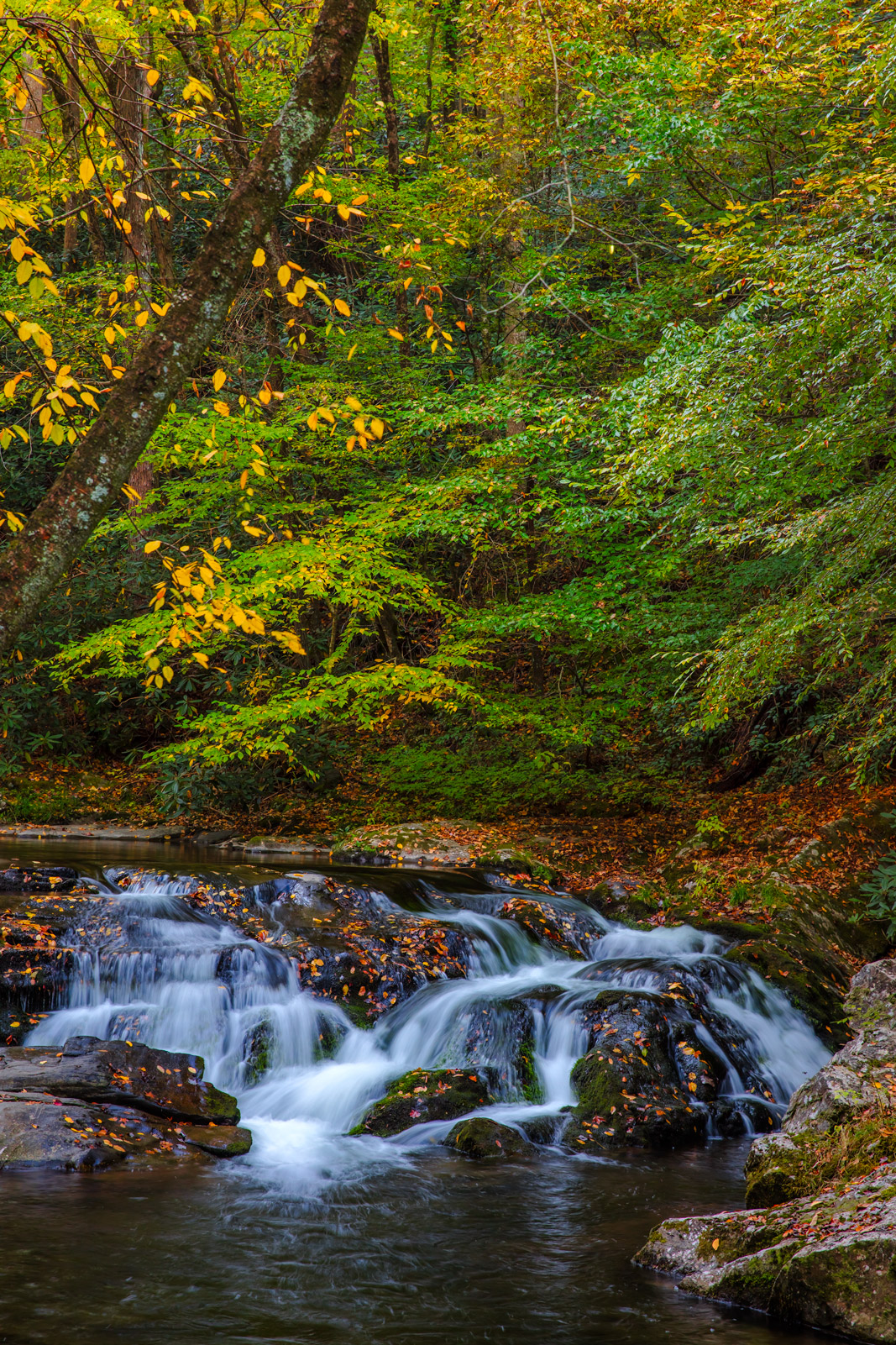 Tennessee, Smoky Mountains, Little River, Fall, Cascade, fall color, photo