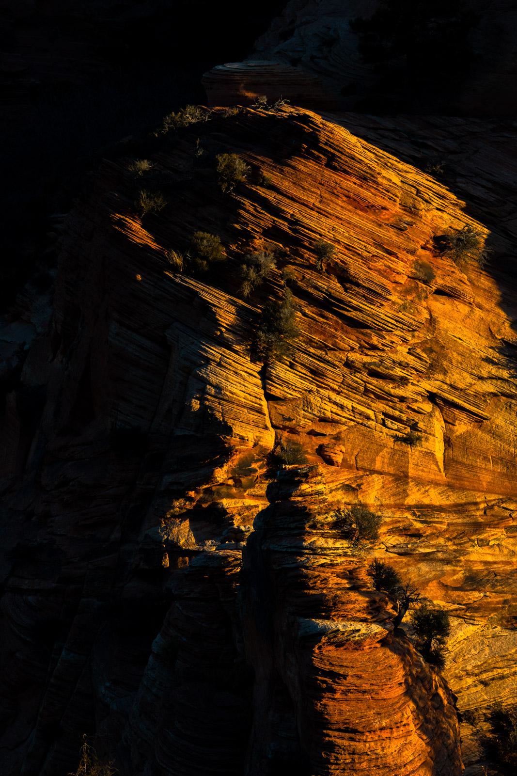 Utah, Zion, National Park, Kolob, Canyon, Fall, Shadows