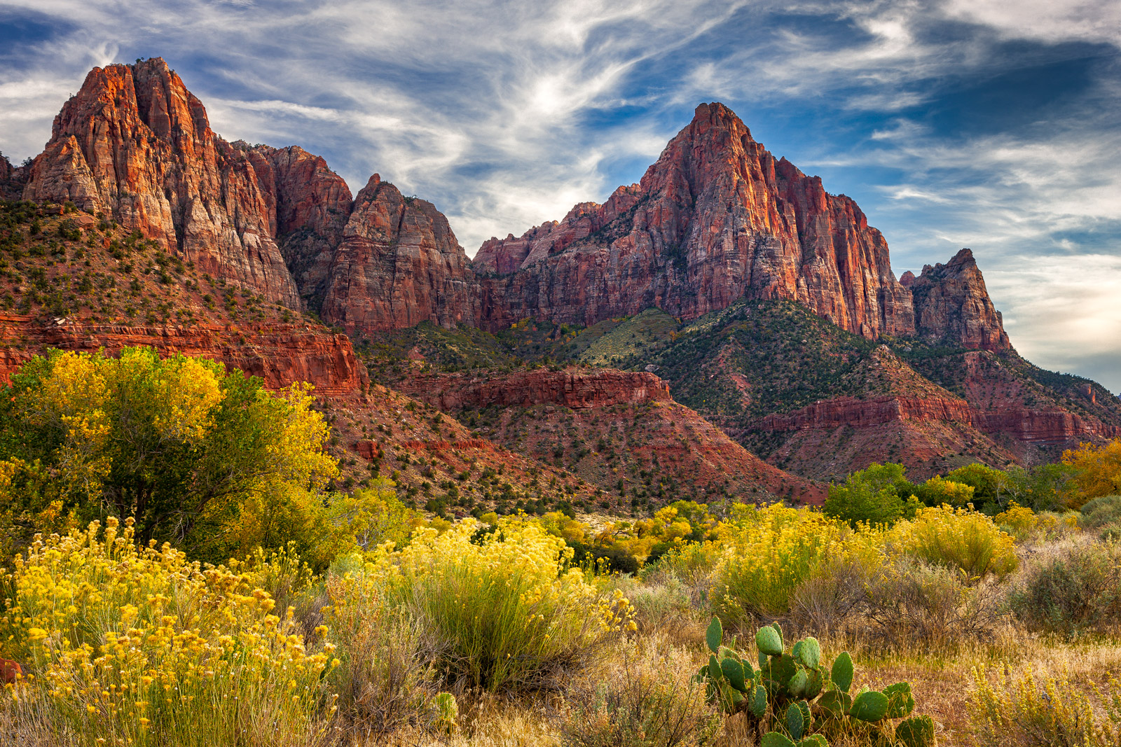 A Limited Edition photograph of The Watchman, a red rock mountain above a field of Fall color in Zion National Park in Utah....