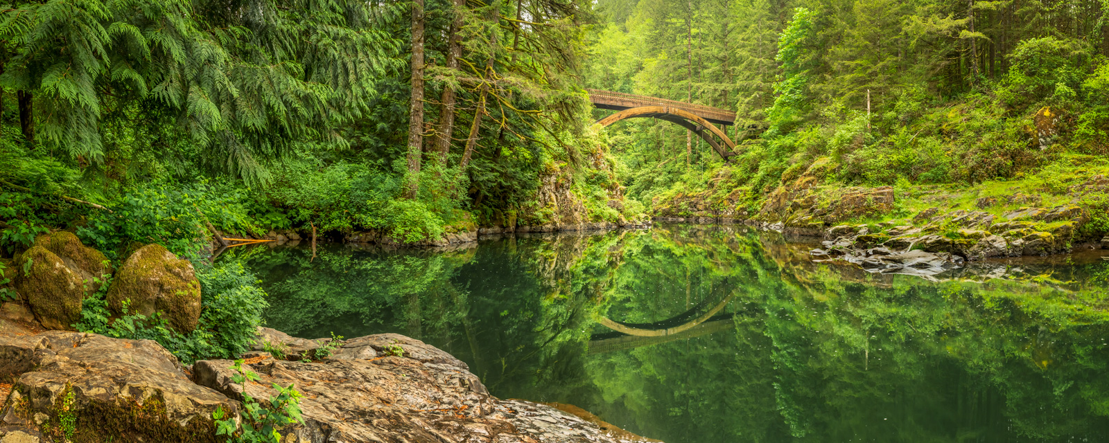 Washington, Moulton Park, Footbridge, reflection, Summer, Green, photo