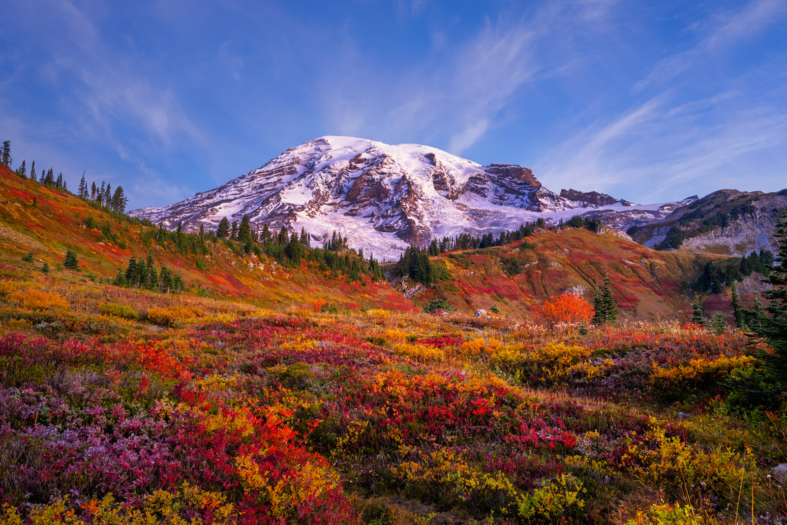 A Limited Edition, Fine Art photograph of brilliant fall colors in the field in front of Mount Rainier in Washington. Available...