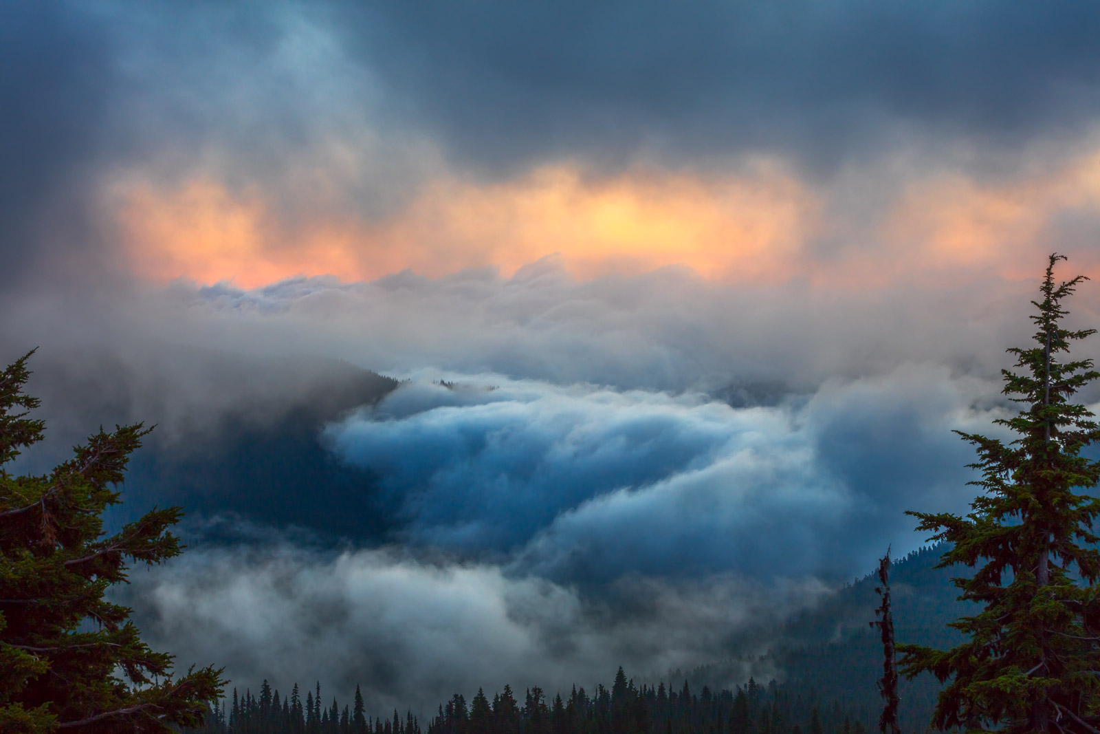 A Limited Edition, Fine Art photograph of captivating clouds filling the valley at sunrise at Mount Rainier in Washington.  Available...