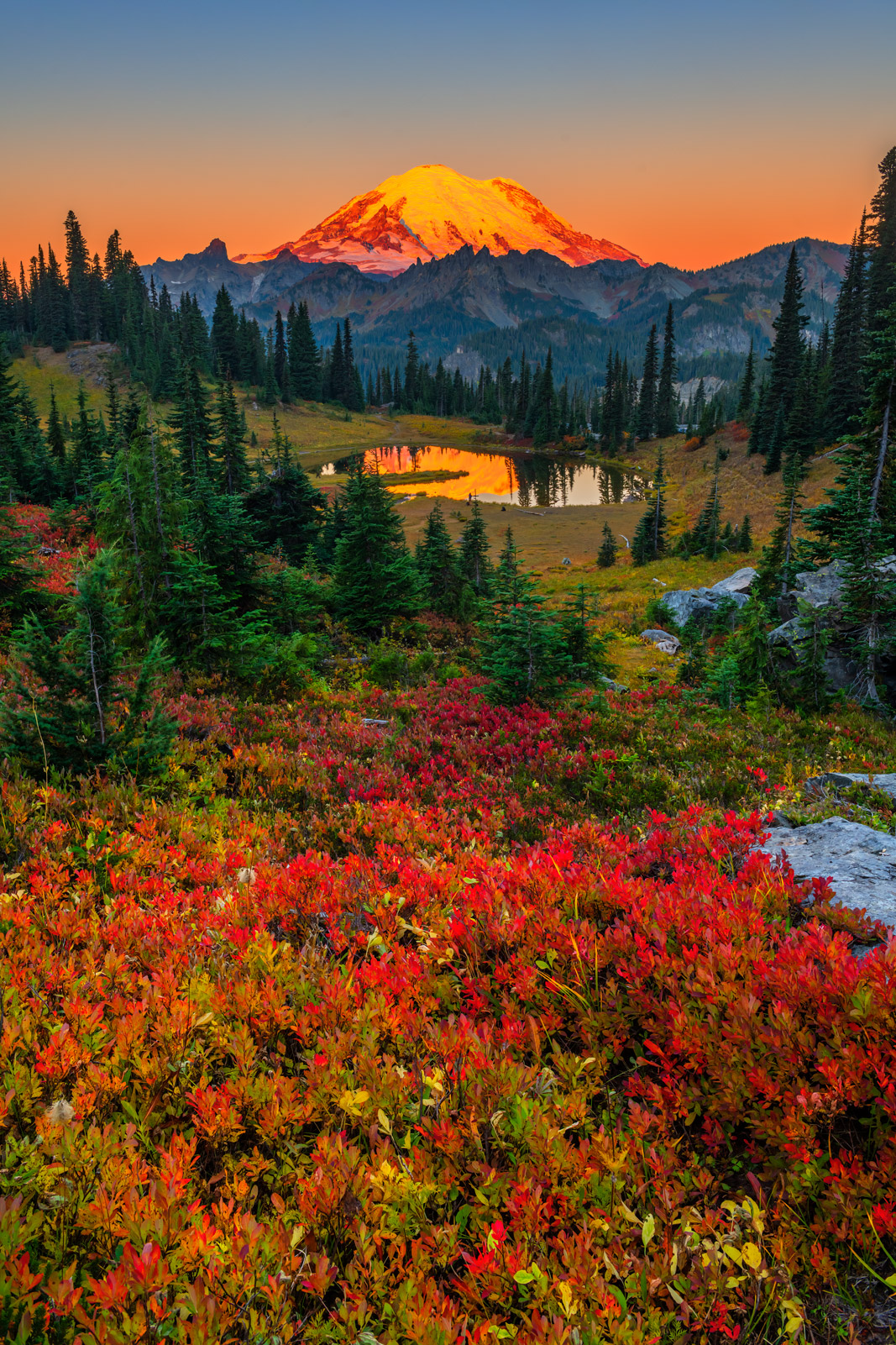 A Limited Edition, Fine Art vertical photograph of vibrant fall color at Tipsoo Lake in front of Mount Rainier in Washington....
