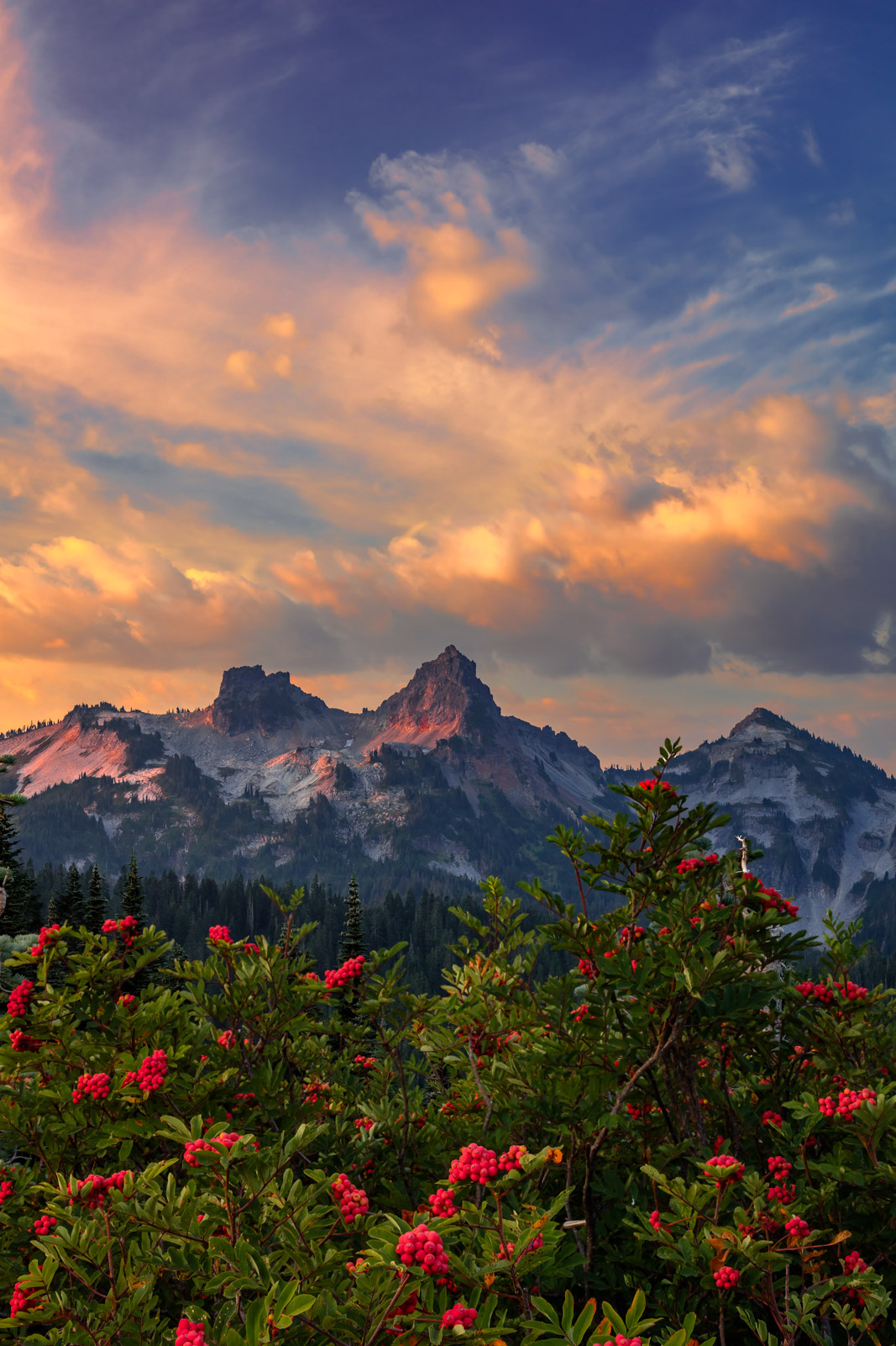 Washington, Mount Rainier, Tatoosh Range, photo