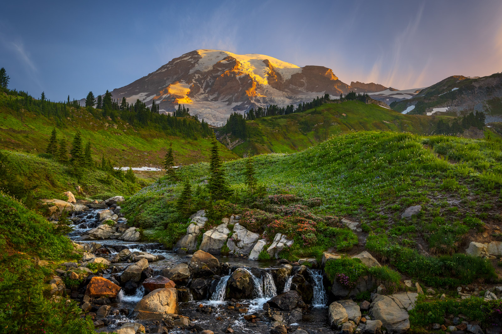 Washington, Rainier, Mount Rainier, Stream, Skyline Trail, Flowers