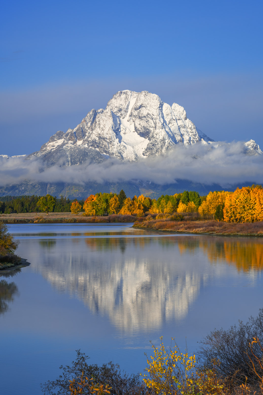 A Limited Edition, Fine Art photograph of a rare reflection of brilliant fall colors and  Mount Moran in the Snake River Oxbow...
