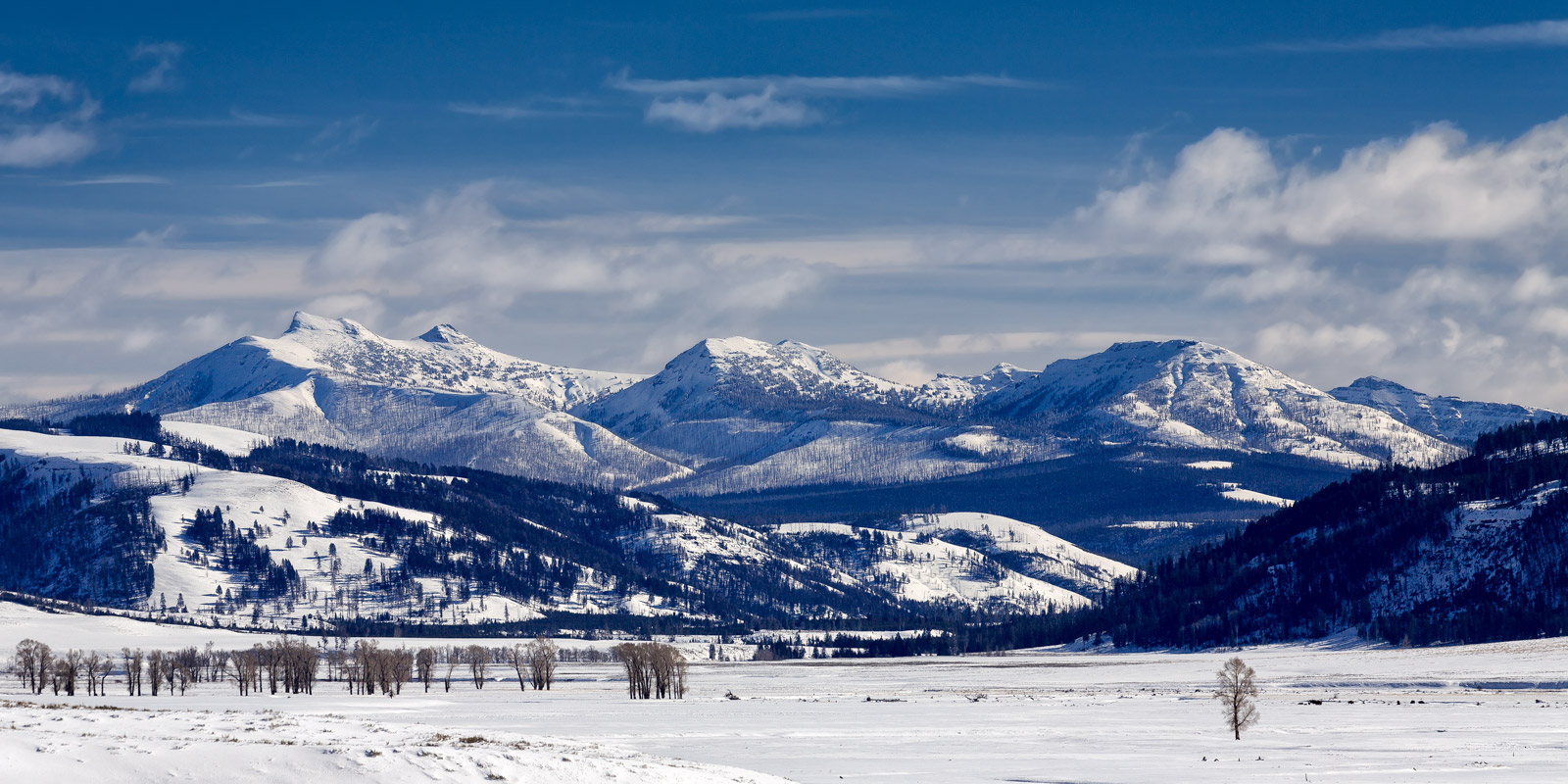 Wyoming, Yellowstone, Winter, Lamar Valley, Mountains, Snow Covered, Winter Landscape, photo